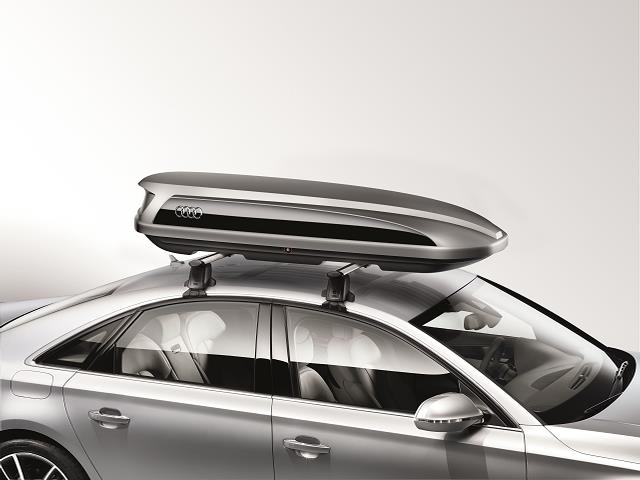 Audi R8 Cargo Carrier - Ski and Luggage. Box, Easy ...